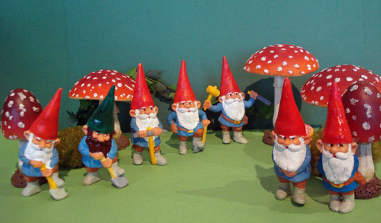 working gnomes